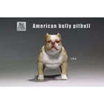 American Bully Pitbull Dog (Beige)