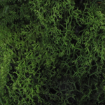 40g Vegetation Texture (Green)