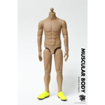 Muscular Body - Suitable for Kagawa