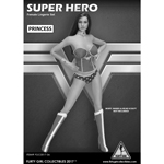 Super Hero Princess Set