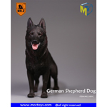 German Shepherd Dog (Black)