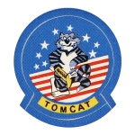 Tomcat Patch (Blue)