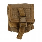 6074A NVG Pouch (Coyote)