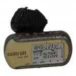 Foretrex 101 GPS (Coyote)