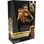 Star Wars : Episode VI - Luke Skywalker Endor (Deluxe Version)