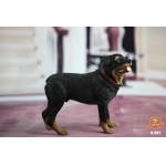 Rottweiler Dog (Black)