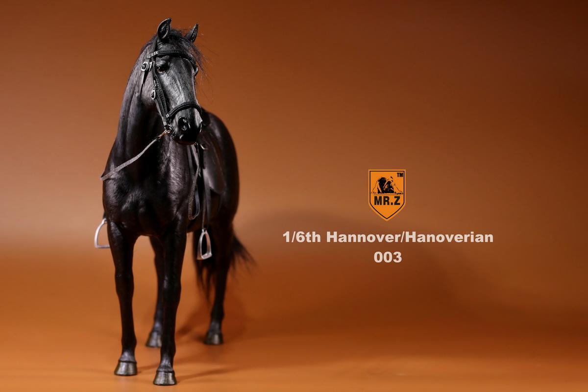 Mr.Z Germany Hannover Hanoverian Black Horse 1//6 Scale Model 003 Figure NEW