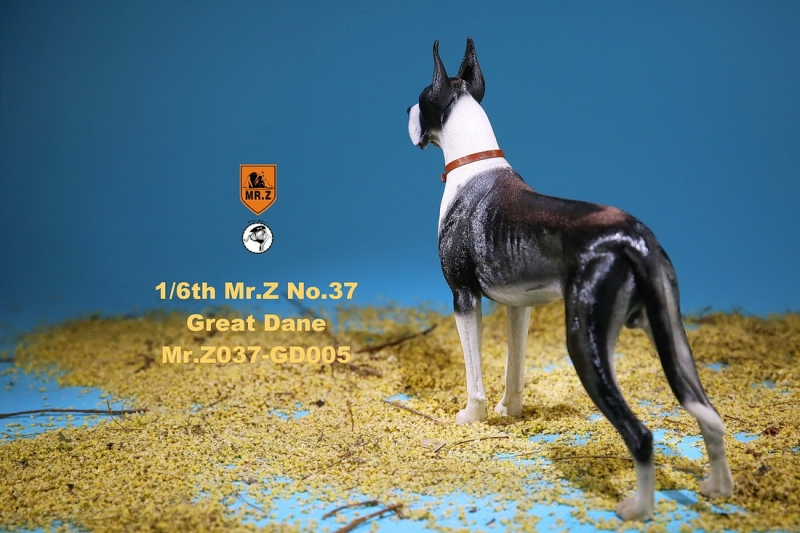 NEW PRODUCT: Mr.Z: simulation animal 37th-1/6 ratio German Great Dane German Great Dane - full set of 6 colors C_7